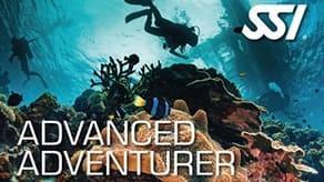 adv adventurer